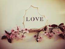 Le coeur en bois blanc avec le mot AMOUR a écrit là-dessus Fleurs roses d'arbre de fleur avec le fond blanc Image stock