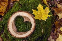 Le coeur en bois découpé sur un tronçon avec l'érable tombé part dans les avants Photographie stock libre de droits