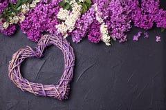 Le coeur et la frontière décoratifs du lilas coloré de ressort fleurit o Photographie stock