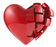 Le coeur humain des segments Photographie stock
