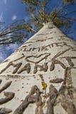 Le coeur imprime des noms sur un arbre Photo stock