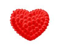 Le coeur rouge de Rose Photographie stock libre de droits