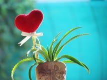 Le coeur rouge fait de serviette, bâton avec le crayon, ruban de lien et ananas de nain dans le vase a formé la botte Photo libre de droits