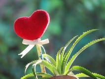 Le coeur rouge fait de serviette, bâton avec le crayon, ruban de lien et ananas de nain dans le vase a formé la botte Photo stock