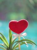 Le coeur rouge fait de serviette, bâton avec le crayon, ruban de lien et ananas de nain dans le vase a formé la botte Photos stock
