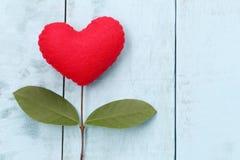 Le coeur rouge placé sur la table en bois bleue se relient dedans aux branches o Photos stock