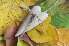 Le coeur se trouve sur les feuilles tombées par automne photographie stock libre de droits