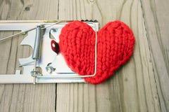 Le coeur tricoté par rouge est saisi par une souricière à clapet Le concept de Images stock