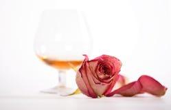 Le cognac et s'est levé Images libres de droits