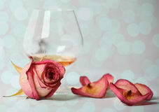 Le cognac et s'est levé Image stock