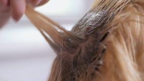 Le coiffeur fait la coloration de cheveux dans le studio de beauté, la coloration professionnelle et les soins capillaires, affai clips vidéos