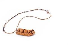 Le collier de tortue sur le fond blanc Photographie stock libre de droits