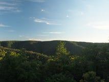 Le colline coperte di estate della foresta Natura della Russia centrale Immagine Stock Libera da Diritti
