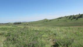 Le colline ed i pascoli del Sud Dakota video d archivio