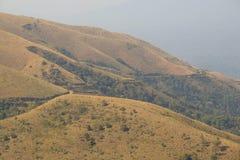 Le colline nel mulayanagiri del chikmagalur del lato della foresta abbelliscono la vista Fotografia Stock Libera da Diritti