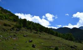 Le colline pedemontana della valle Fotografia Stock Libera da Diritti