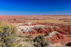 Le colline rosse del ` s dell'Arizona hanno dipinto il deserto Immagine Stock Libera da Diritti