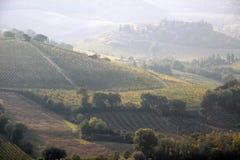 Le colline toscane si avvicinano a San Gimignano Immagine Stock