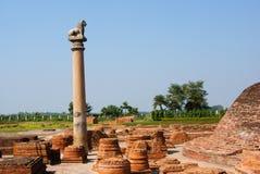 Le colonne hanno trovato a Vaishali con il singolo capitale del leone Fotografie Stock