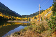 Le Colorado Aspen Images stock