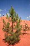 Le Colorado de Rustrel - la Provence Photographie stock libre de droits