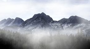 Le Colorado Misty Mountain photographie stock