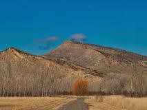 Le Colorado occidental en premier ressort Photographie stock libre de droits
