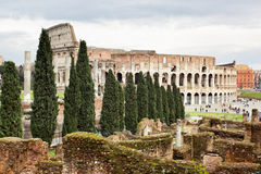 Le Colosseum Photographie stock libre de droits