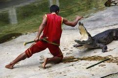Le combat d'homme contre le crocodile Images stock