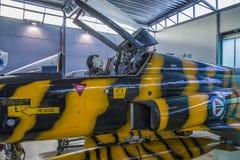 Combattant 5 de liberté de Northrop f-5a Images stock