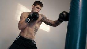 Le combattant libre a le sac de sable dans le gymnase clips vidéos