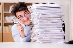 Le commissaire aux comptes drôle vérifiant des rapports avec la loupe image stock