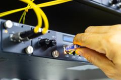 Le commutateur de réseau dans le support, les câbles bleus de réseau relient le port de module de SFP photographie stock libre de droits