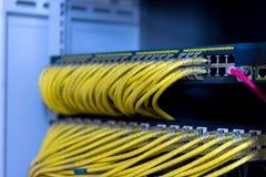 Le commutateur de réseau sur l'armoire de support avec les câbles jaunes de corde de correction d'utp s'est relié photos libres de droits