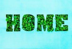 Le concept créatif avec le blanc de papier de turquoise avec la maison de lettrage d'ensemble dans l'herbe fraîche verte pousse H Photographie stock libre de droits