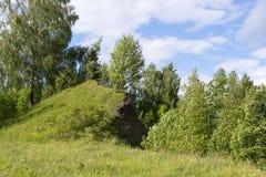 Le concept de l'écologie Arbres, une colline et un beau ciel Images libres de droits