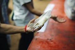 Le concept de l'alimentation : Les mains des pauvres re?oivent la nourriture des mains de l'humanitaire : Aide pour alimenter les photographie stock libre de droits