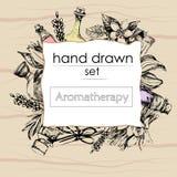 Le concept de l'aromatherapy et du massage illustration libre de droits