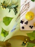 Le concept de l'automne tôt, une composition des baies, légumes, fleurs, feuilles, matériaux d'art images stock