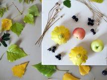Le concept de l'automne tôt, une composition des baies, légumes, fleurs, feuilles, matériaux d'art photo libre de droits