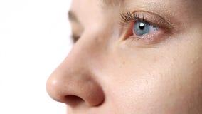 Le concept de la santé d'oeil et de la correction de vision clips vidéos