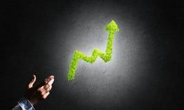 Le concept des opérations bancaires et de l'investissement a présenté avec le graphique vert de planète Images libres de droits