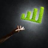 Le concept des opérations bancaires et de l'investissement a présenté avec le graphique vert de planète Photographie stock libre de droits