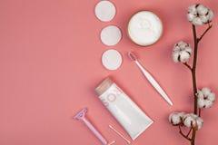 Le concept des soins de la peau Protections de coton pour le maquillage de retrait, branche de coton, protections de coton, bâton photographie stock libre de droits