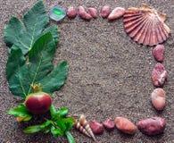 Le concept des vacances La coquille et la Mer Rouge lapide se sont chargées de l'I Photographie stock libre de droits