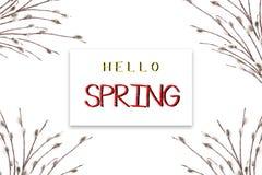 Le concept du ressort Carte de vacances avec le ressort des textes bonjour Branches fleurissantes de saule sur un fond blanc photos libres de droits