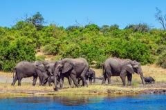 Le concept du tourisme actif Photographie stock libre de droits