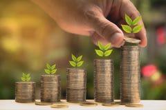 Le concept et la main d'argent d'économie mettant la pièce de monnaie d'argent empilent l'élevage Image libre de droits