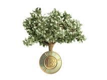 Le concept moderne du bénéfice de l'investissement dans le bitcoin 3d rendent Image libre de droits
