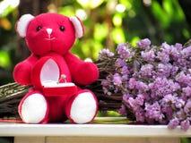 Le concept pour l'amour le jour de valentines, ours de nounours reposent la prise la boîte rouge de velours avec l'anneau par le  Photo stock